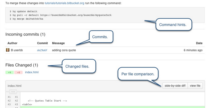 Compare Your Fork To The Original | Bitbucket 101 | Guides